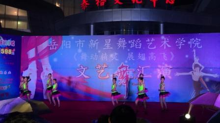 岳阳市新星舞蹈艺术学校舞蹈汇演