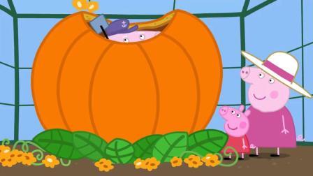 小猪佩奇第7季:万圣节幼儿园南瓜比赛,佩奇的超级大南瓜获得最佳飞翔南瓜奖