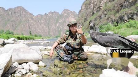 追鹳日记 黑豹野生动物保护站