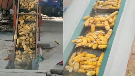 大型玉米脱粒机价格,大型玉米脱粒机厂家