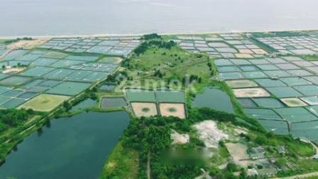 大型海鲜养殖场航拍-凌晨两点素材网
