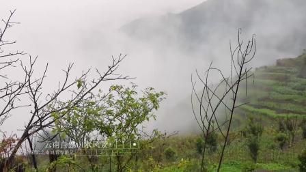 云南旅游景点及路线