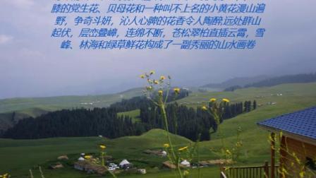 江布拉克--大美特色草原.mp4