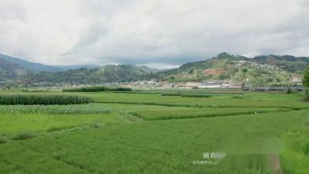 云南有什么好玩的景点