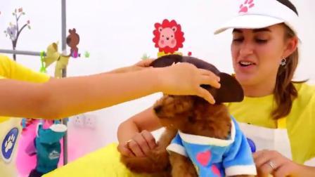萌娃小可爱带着狗狗去宠物美容店里美容,萌娃:小家伙别担心!很快你就会变得美美哒!