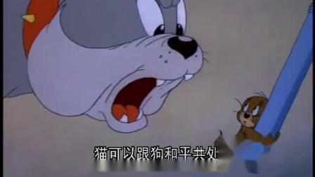上一秒汤姆杰瑞沙皮狗猫鼠犬不宁,下一秒就握手言和