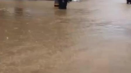 永嘉县瓯北花岙村,台风损失严重