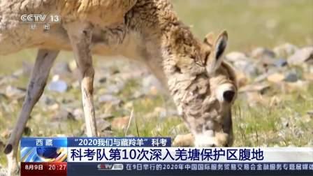 """""""2020我们与藏羚羊""""科考·科考队第10次深入羌塘保护区腹地"""