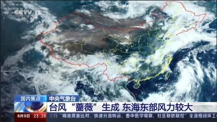 """中央气象台·台风""""蔷薇""""生成 东海东部风力较大"""