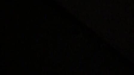我们在地板发现了一只萤火虫
