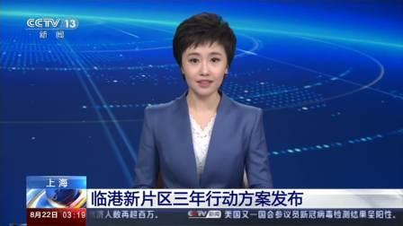 上海临港新片区三年行动方案发布