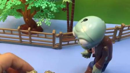 笨笨要把橡子果藏起来,藏到树下就安全了,笨笨怎么找不着橡子果了?