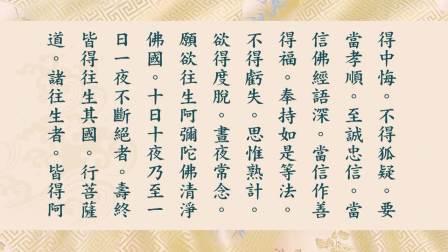 净空老法师 读诵 无量寿经(新版)