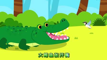 宝宝巴士-大鳄鱼笑眯眯,好朋友燕千鸟帮他刷牙来了,牙齿变闪亮高兴得跳舞