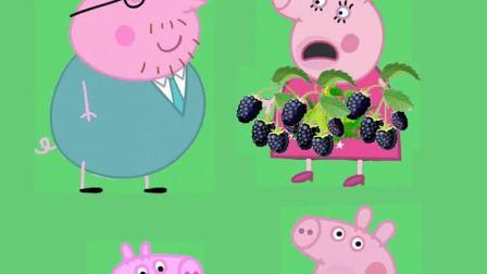 猪妈妈变成了黑莓树,一家都被逗笑了