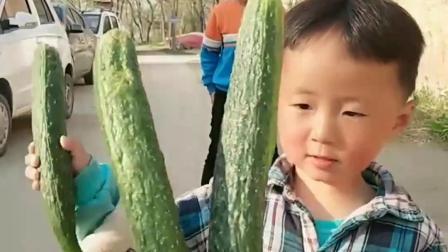 童年趣事:这是能吃的黄瓜吗