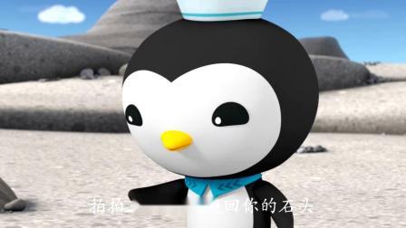 海底小纵队:皮医生见小企鹅吵架,赶过去劝架,却差点闹出笑话!