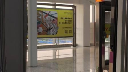 上海地铁5号线北桥到奉贤新城(3)