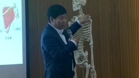 中医针灸培训视频-肌筋膜松解术-冈上肌
