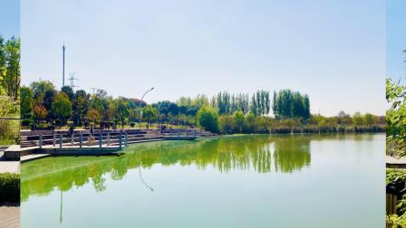 蚌埠市龙子湖风景区 龙湖东岸公园秋景