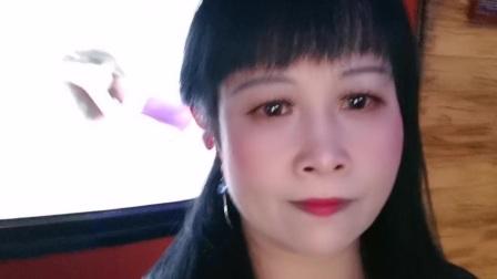 zhanghongaaa自拍精选歌曲 无奈的思绪 原创