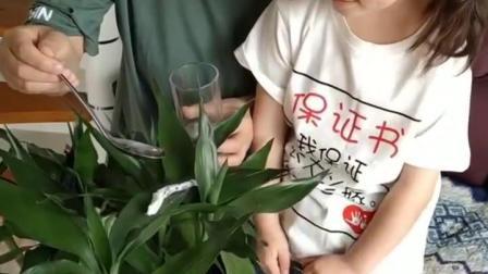 搞笑亲子游戏:给毛毛虫喂点水喝