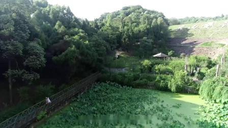 德阳市旌阳区赣江路与庐山路交汇处西南角土块宣传视频