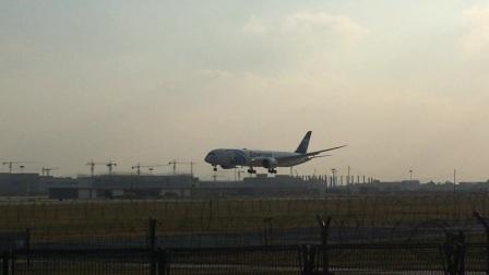 杭州萧山国际机场 埃及航空MS953(B787-9)开罗-杭州