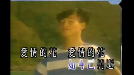 笛子曲【多少柔情多少泪】大bB5调