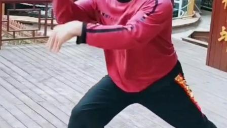 刚猛八极拳,武术高手的演练,太猛了!
