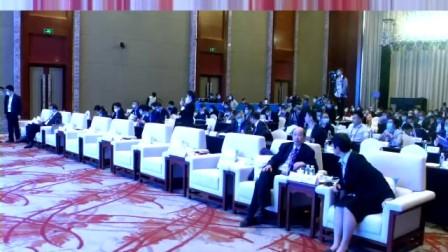 2020中国—东盟丝路电子商务论坛