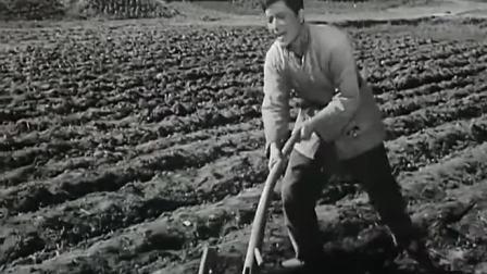 国产经典老电影《洞箫横吹》1956年_高清