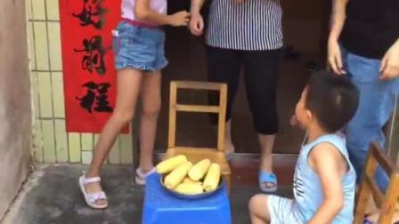 金色童年:全家一起吃甜甜的煮玉米