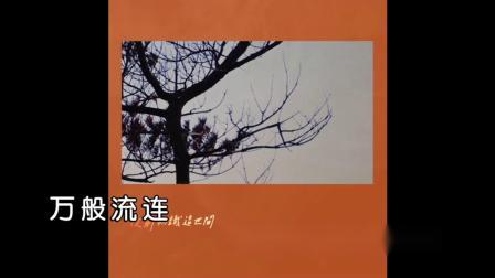 吴青峰《起风了》MTV-国语KTV完整版