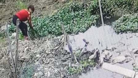 广东省陆丰市潭西镇崎头村这个嬷人堵塞人家排水路