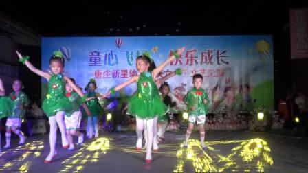 嘉祥县唐庄新星幼儿园六一儿童节晚会