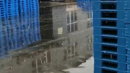 民丰县塑料托盘,民丰县塑料垫板,民丰县塑料托盘有限公司,电话:18669625150