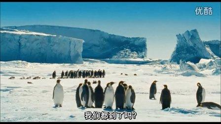【配音】《帝企鹅日记》片段1配音——刘棣作品