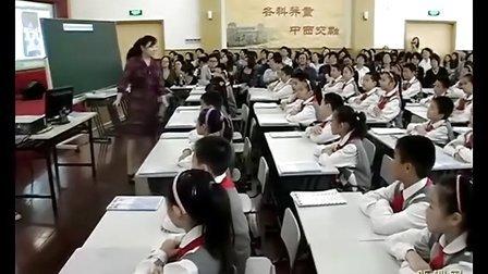 汪晓燕 Animals Have Fleelings小学英语新教材青年教师优质课比赛获奖课例教学实