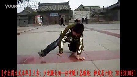 【少北国大武术队】王东:扫搪腿