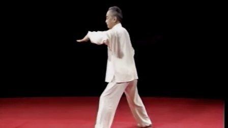 马虹-陈式太极拳7