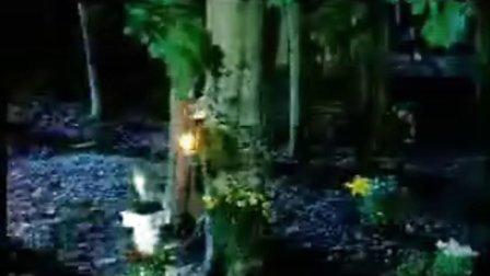神秘园-夜曲