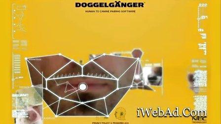 流浪狗庇护所活动网站《测试那种狗狗和你像》