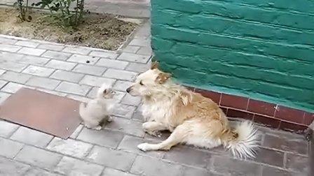 【优酷搞笑】老娘打你脸,你倒是接着呀!