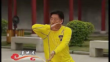 陈式太极拳国标二段单练套路
