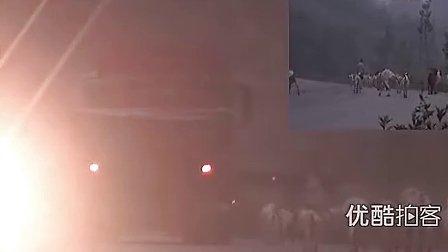 【拍客】牧羊人国道上放羊,车辆无法畅行--文明大家行