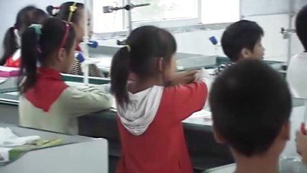 科学三年级水和食用油的比较视频