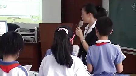 小学三年级语文《七颗钻石》教学视频人教版戴红美