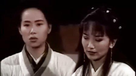 状元花(笑看良缘)9