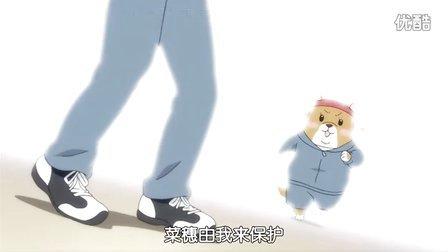 柴犬子 04